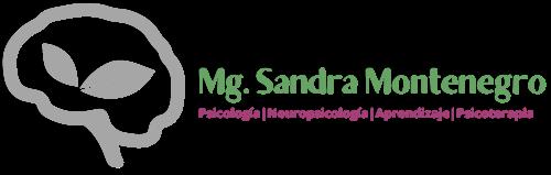 Mg. Sandra Montenegro
